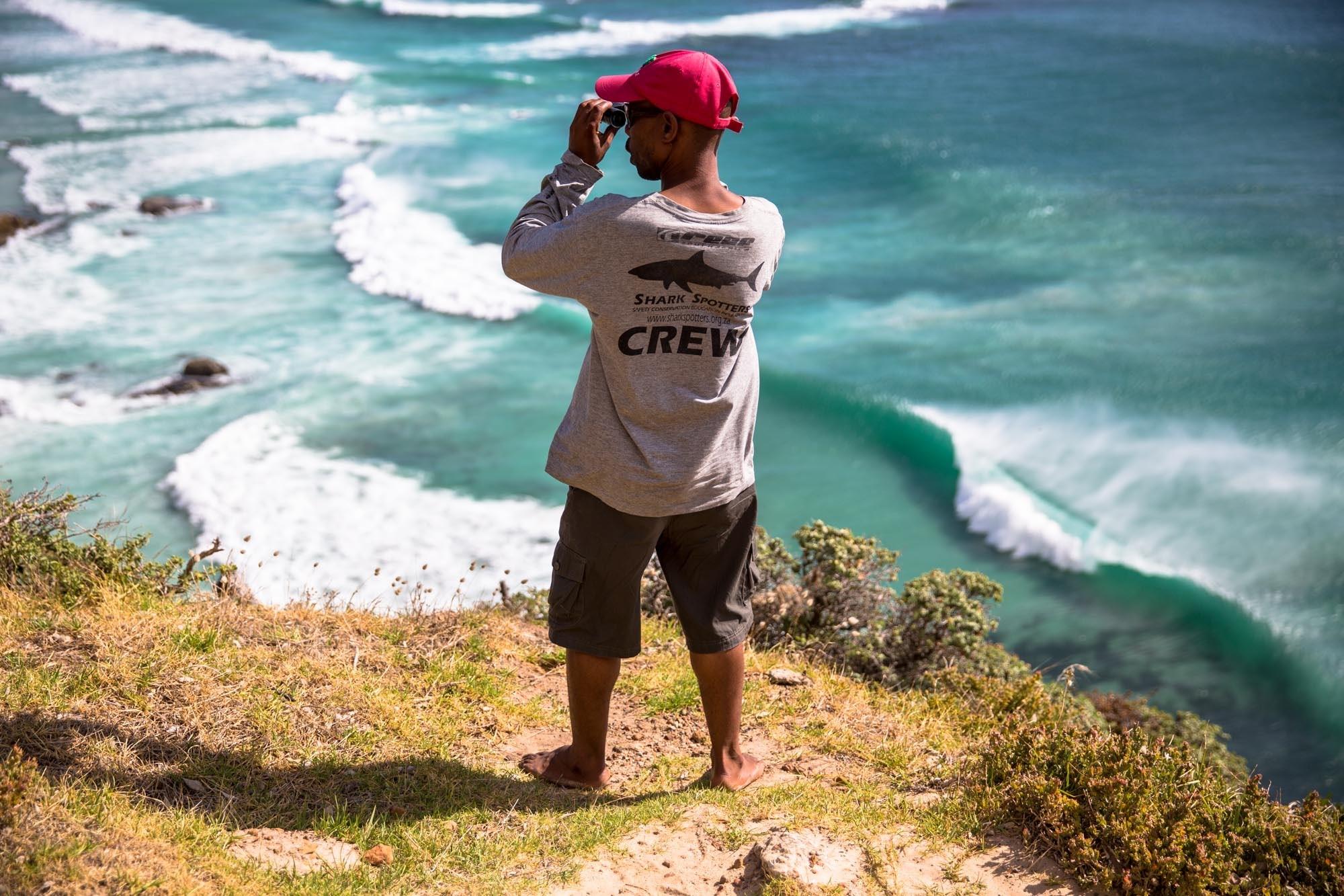 shark spotter cape town