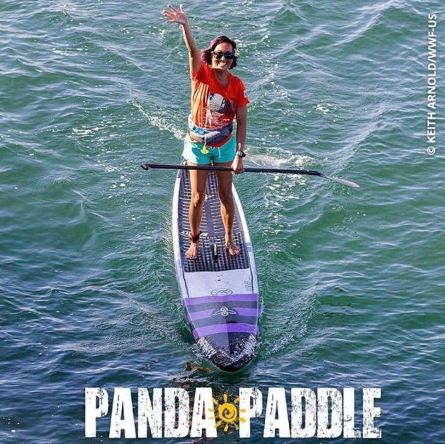 Panda Paddle World Wildlife Fund WWF