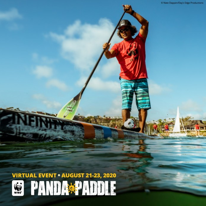 Anthony Vela Virtual Panda Paddle World Wildlife Fund