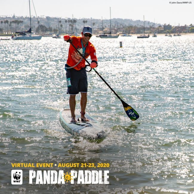 Virtual Panda Paddle World Wildlife Fund Virtual Event